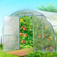Теплица Урожайная Эконом 20х20 (1м)